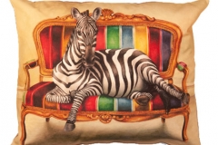 2 Zebra