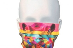 wlc-hippo-mask-Copy-375x400